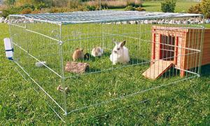 Кроликов в клетке с вольером