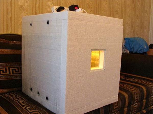 Сделанный своими руками инкубатор из пенопласта