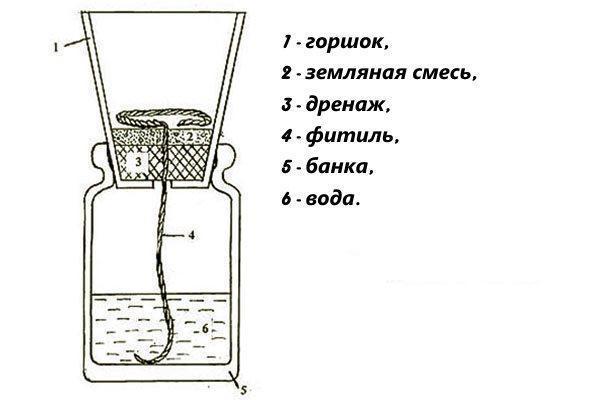 Схема устройства фитиля