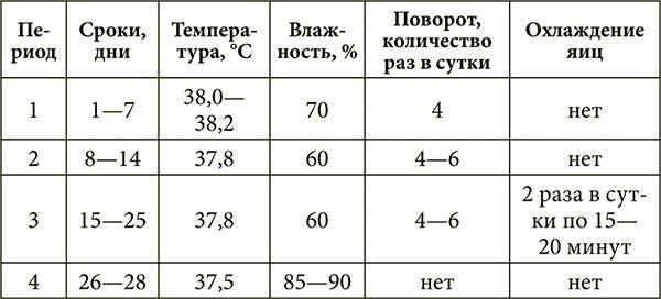 Таблица инкубации утиных яиц