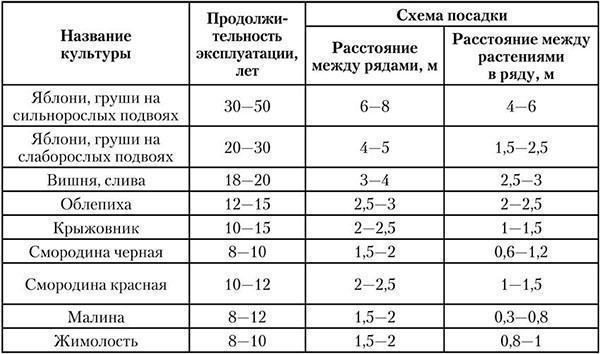 Таблица продолжительности эксплуатации деревьев и кустарников