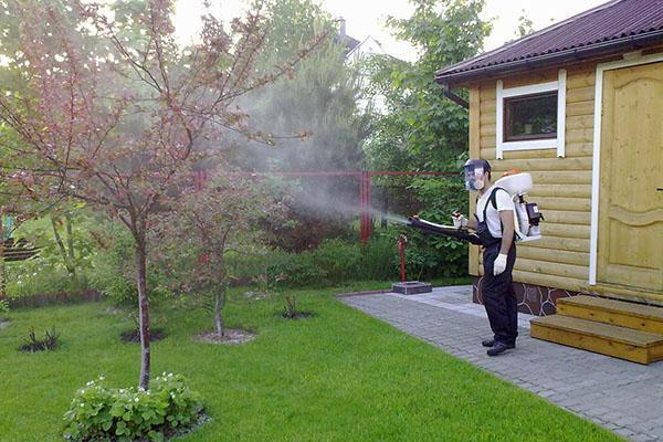 Эффективная обработка деревьев