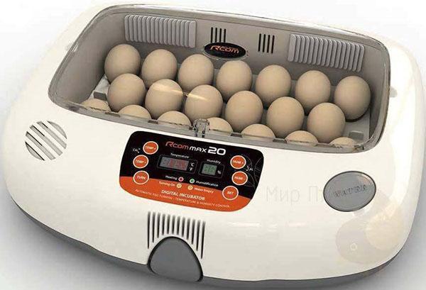 Инкубатор с автоматическим поворотом яиц