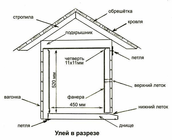 Схематическое изображение улья