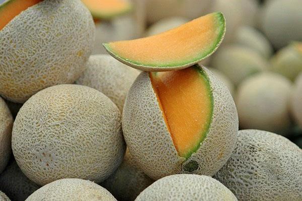 У дыни Канталупа мякоть оранжевого цвета
