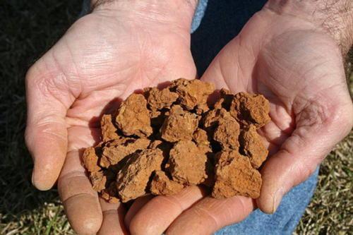 Образец глинистой почвы