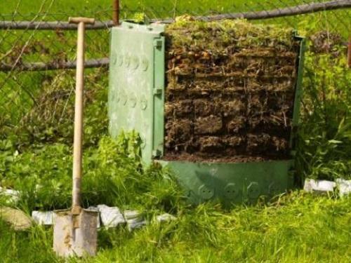 kompost-iz-lyupina
