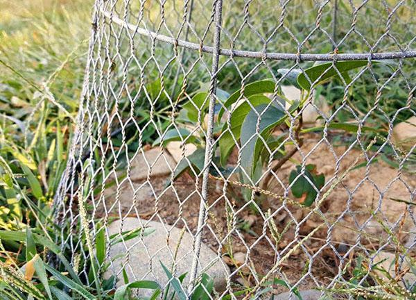 мелкоячеистая проволочная сетка