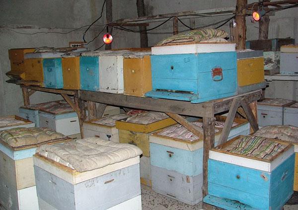 омшаник для пчел