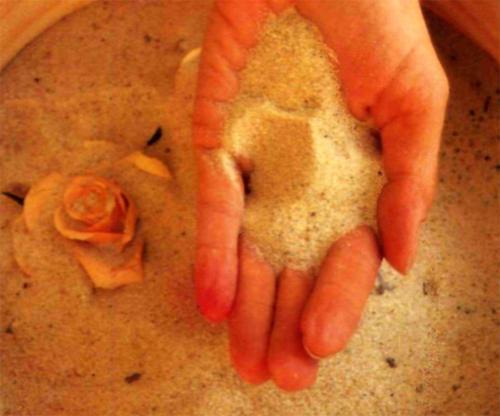 сушим розы в песке