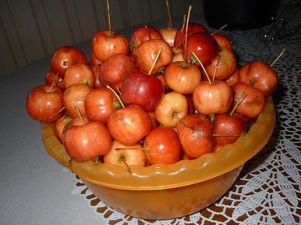 моем яблочки