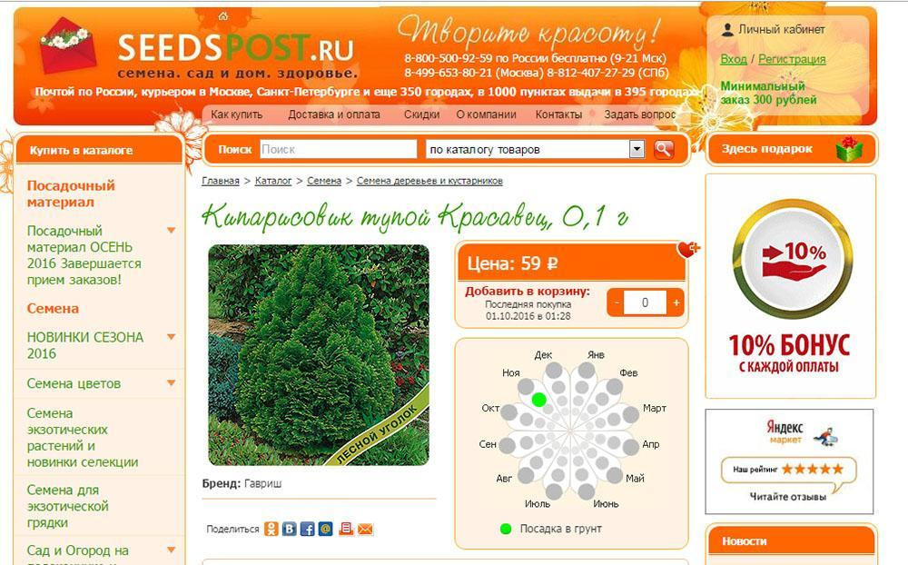 семена кипариса в seedspost-ru