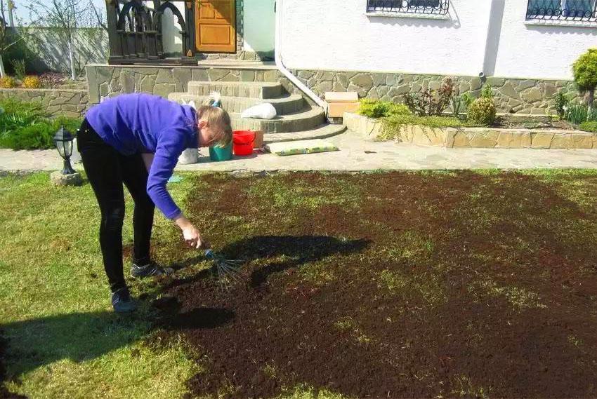 компост на газон