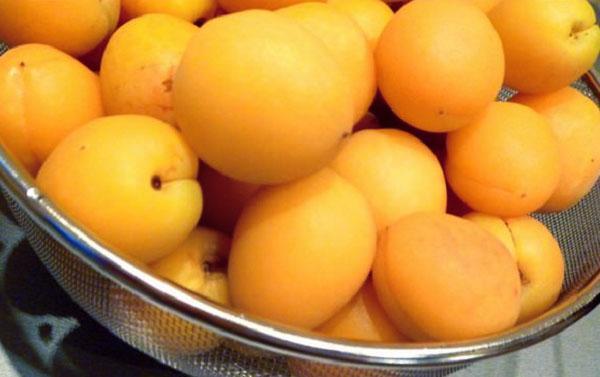 вымыть абрикосы