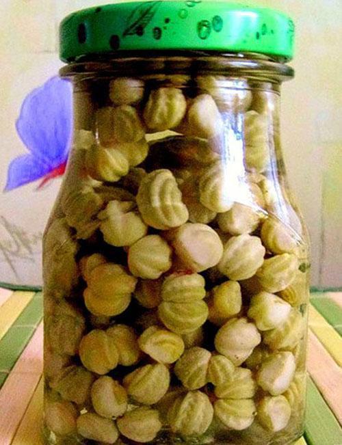 маринованные семена настурции