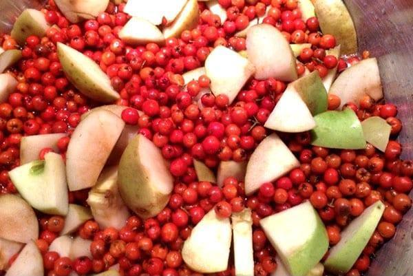 яблоки и брусника для компота