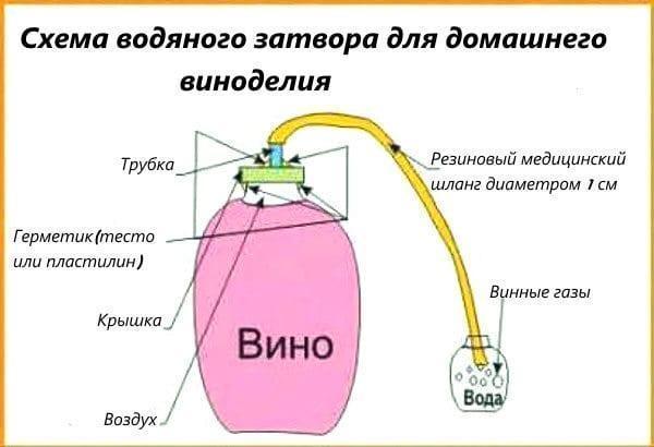 схема водяного затвора