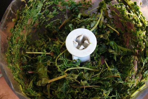 измельчить листья в блендере