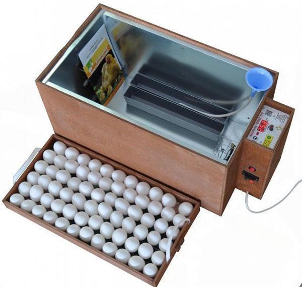 устройство инкубатора блиц