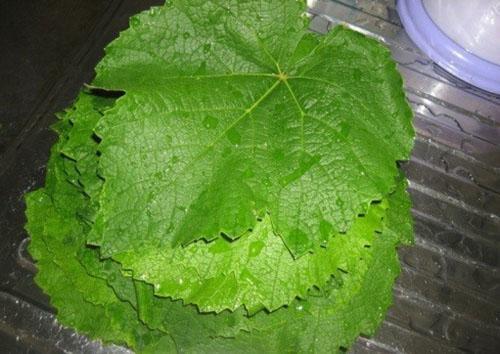 чистые листья сложить стопкой