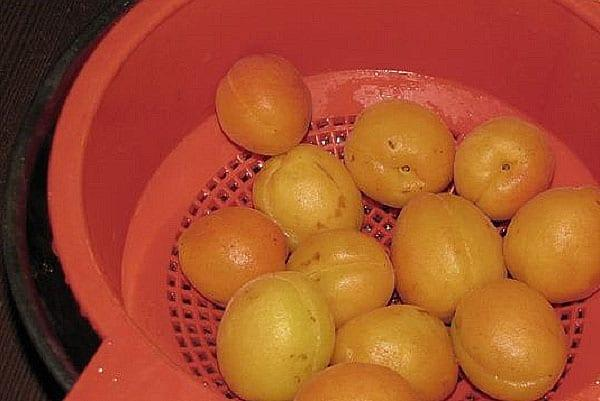 помыть и просушить абрикосы