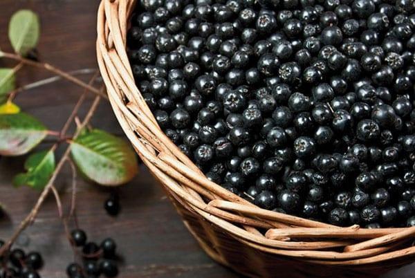 подготовить черноплодку для компота