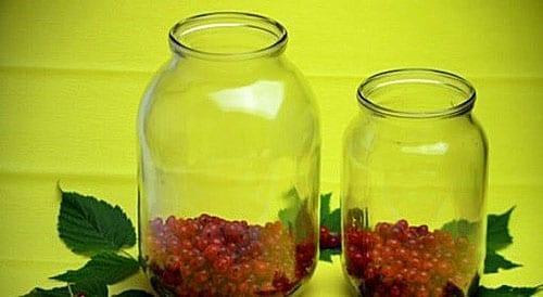 чистые ягоды насыпать в банки