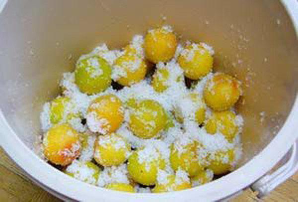 засыпать плоды сахаром и залить спиртом
