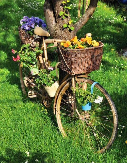 маленькие клумбы на велосипеде