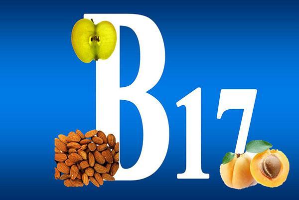 витамин В17 в косточках абрикоса