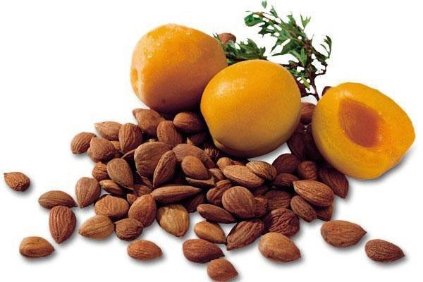 Польза абрикосовых косточек против рака