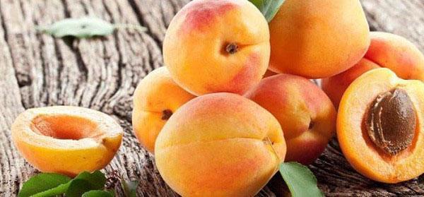 яркие сочные плоды абрикоса