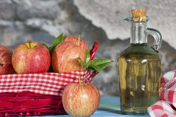 комплекс органических кислот в яблочном уксусе