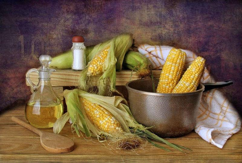 заготовка кукурузных рылец