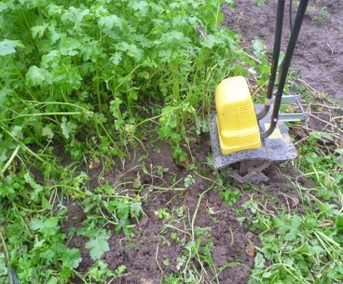 заделывание в почву