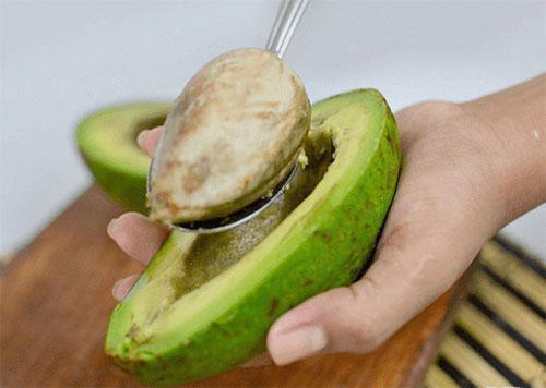 готовим косточку авокадо к проращиванию