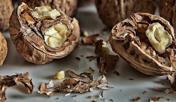 из перегородок грецких орехов делают лекарства