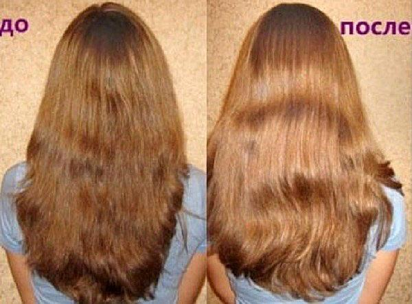 польза ревеня для волос