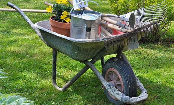 садовая тачка в работе