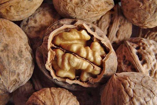 в грецком орехе полезны и мякоть, и перегородки, и скорлупа