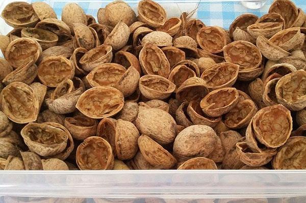 Настойка из скорлупы грецкого ореха