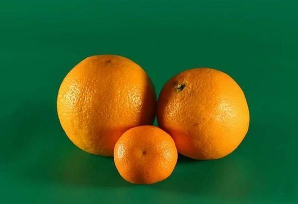апельсины и мандарины