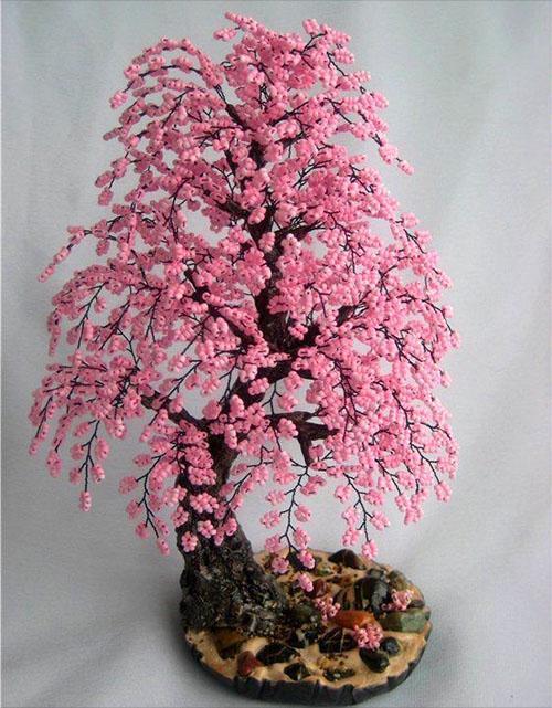 нежная цветущая сакура