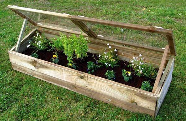 парник для выращивания ранних овощей