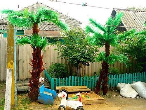 детская площадка под пальмой