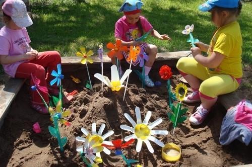цветут цветы в песочнице