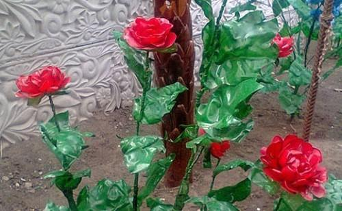 красные розы из пластиковых бутылок