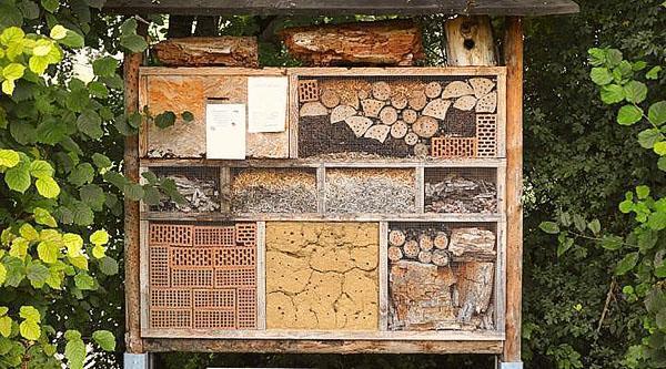 конструкция дома для одиночных пчел
