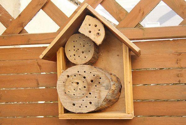 вариант пчелиного отеля