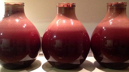 бродит вино из варенья